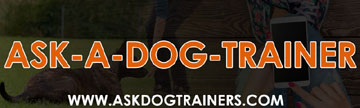 Dog & Puppy Training (city & state) Virtual Online Dog Training | ASK-DOG-TRAINERS
